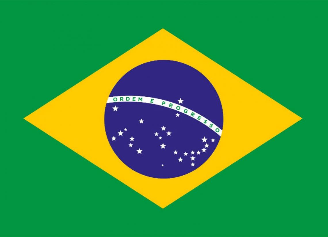 Bandeira Nacional brasileira (Foto: PALÁCIO DO PLANALTO)