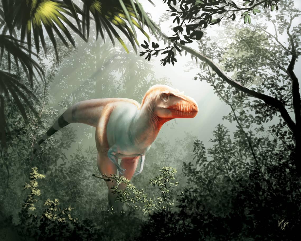 Simulação artística feito pela Universidade de Calgary e pelo Museu Real Tyrrell mostra como seria o Thanatotheristes degrootorum, uma espécie recém-descoberta de T-Rex