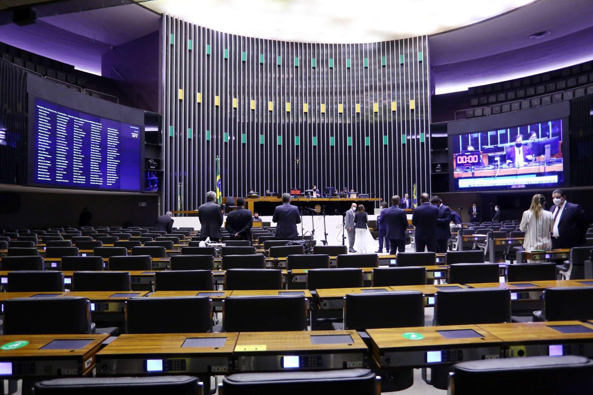 PROPOSTA foi aprovada com quase 500 votos favoráveis nos dois turnos (Foto: Najara Araujo/Câmara dos Deputados)