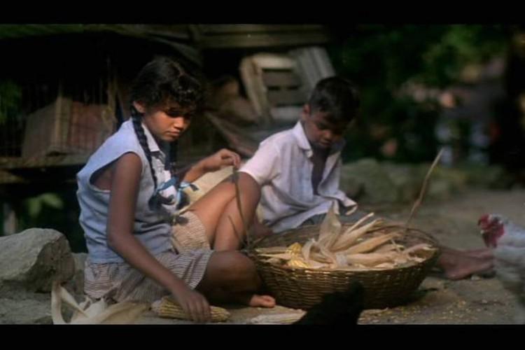 O filme da minha vida, de Alvarina Souza Silva, compõe a mostra contemporânea da CineOP