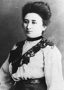 Como militante comunista, Rosa defendia a democracia e a liberdade, além de lutar contra as guerras.