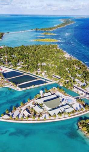 KIRIBATI, país insular no Pacífico Central, com 33 atóis de corais e pequenas ilhotas, muitas desabitadas.