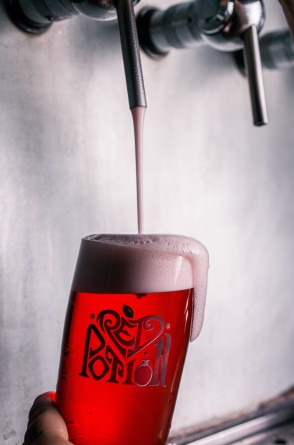 Hocus Pocus Red Potion Berliner Weisse 4%