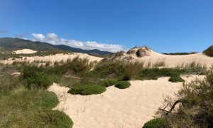 Amiga da Cresmina, as dunas dos ventos de Cascais