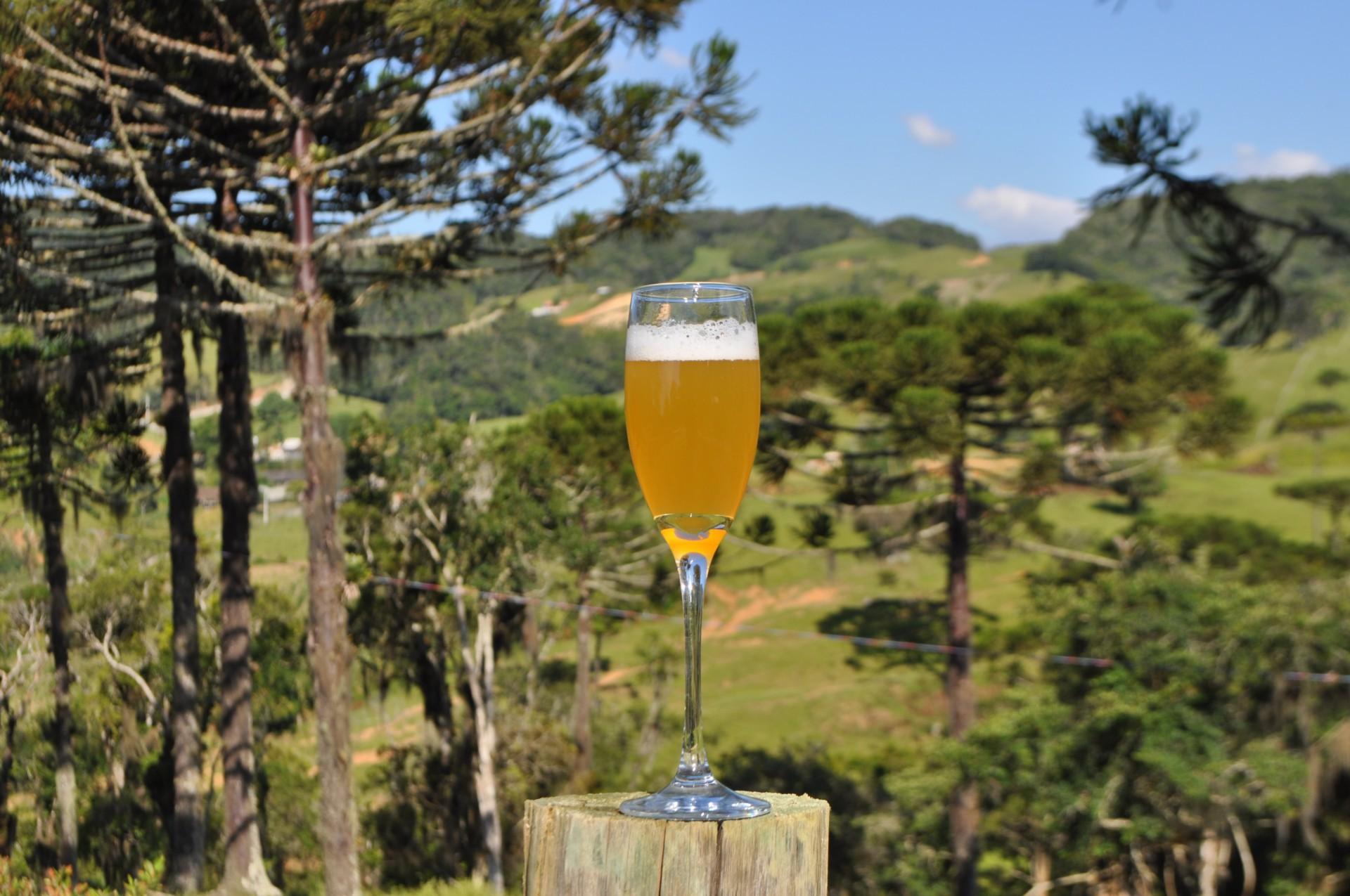 Cervejas de fazenda, inspiradas em receitas tradicionais belgas  (Foto: divulgação)