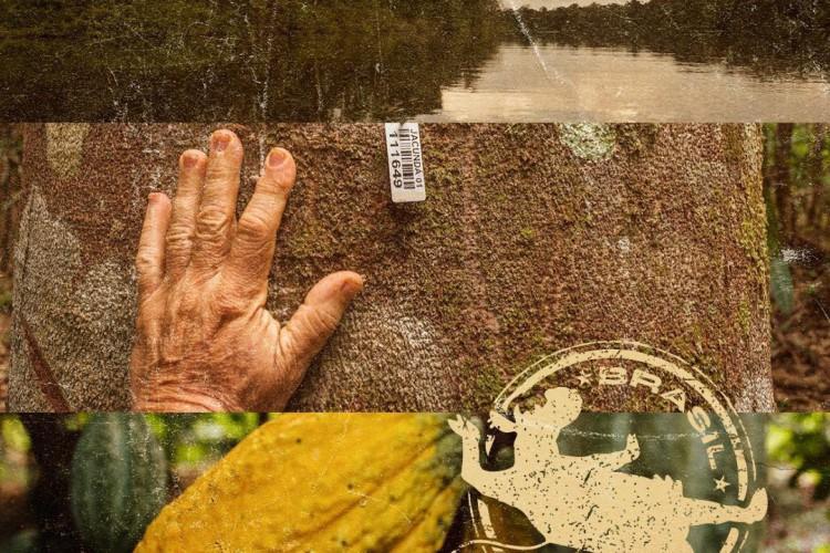 O que vem da terra é o que compõe cada receita e eleva as experiências das degustações (Foto: divulgação )