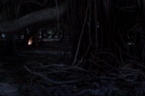 A Mostra Limite apresenta recorte de obras mais desafiadora, como o curta 'Vagalumes', de Léo Bittencourt, que foca nos frequentadores noturnos do Parque do Flamengo e seus costumes