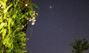 Cinco planetas para ver a olho nu no começo da noite