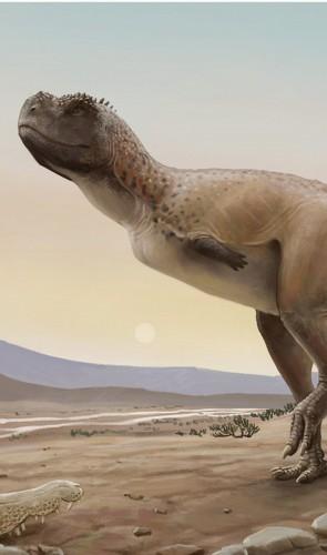 Conheça o <i>Kurupi itaata</i>: um novo terópode e primeira espécie carnívora descrita de Monte Alto (SP).