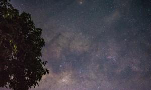 Satélite, planeta, estrela... o que é esse ponto brilhante no céu?