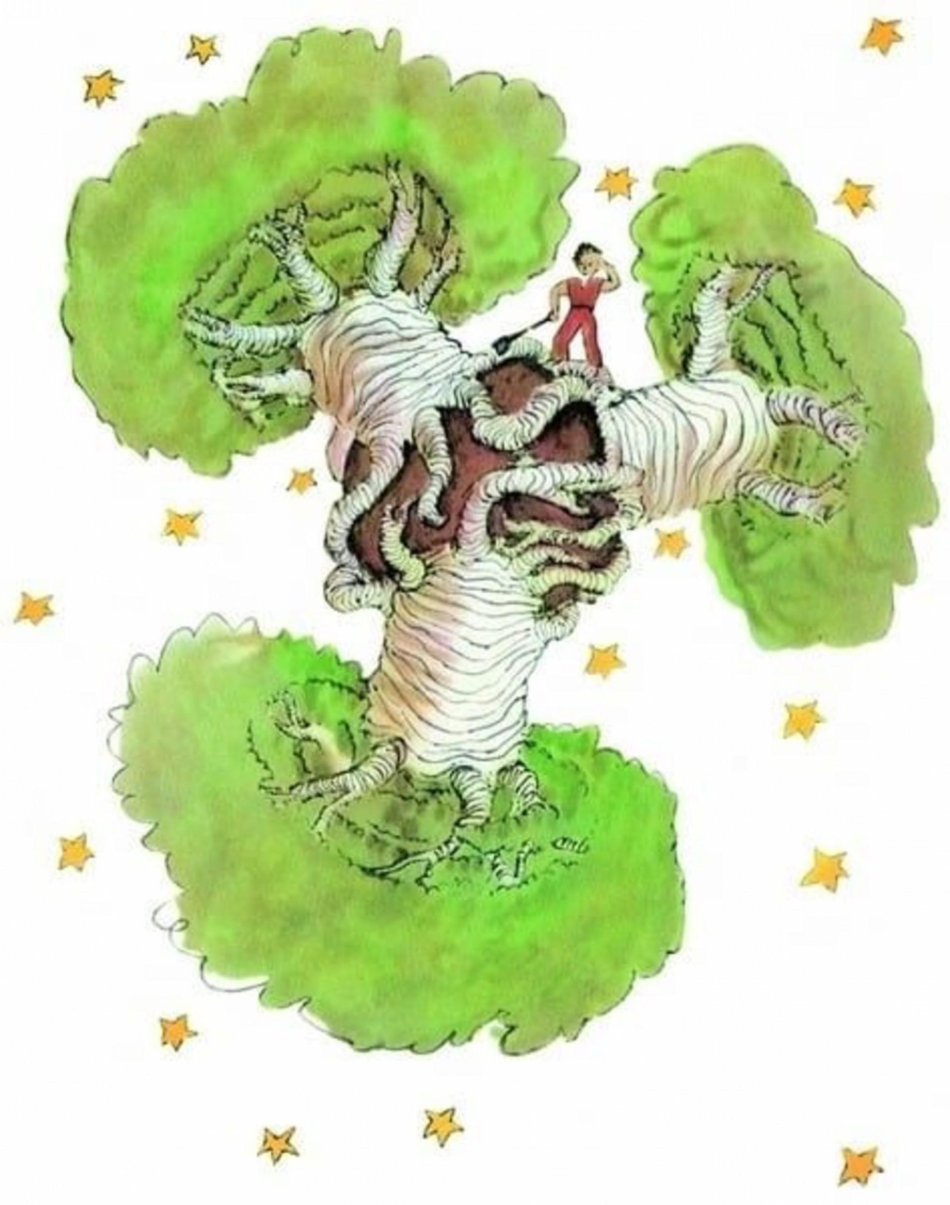 Os baobás do Pequeno Príncipe.(Foto: O Pequeno Príncipe, de  Antoine de Saint-Exupéry)
