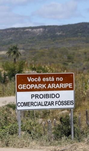 3 - Ministério da Ciência alemão dá outra versão sobre a aquisição do fóssil.