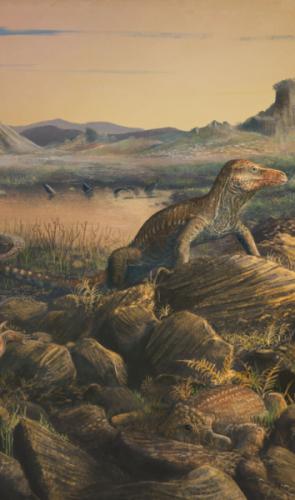 Teyujagua paradoxa: em 2016, trouxe informações chave sobre a evolução dos dinossauros, aves e jacarés.