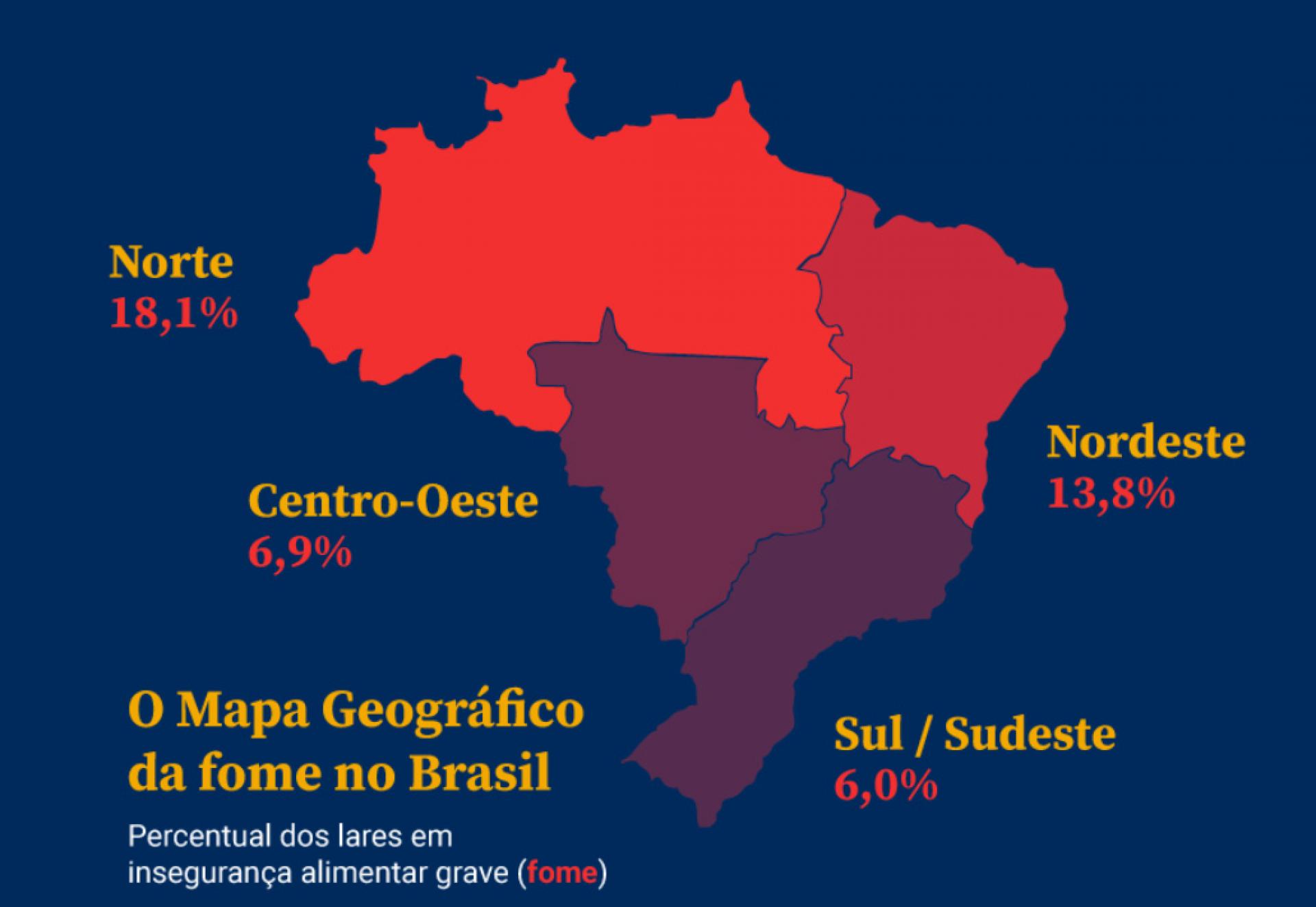 Inquérito Nacional sobre Insegurança Alimentar no Contexto da Pandemia da Covid-19 no Brasil, desenvolvido pela Rede Brasileira de Pesquisa em Soberania e Segurança Alimentar (Rede PENSSAN)(Foto: Rede PENSSAN)